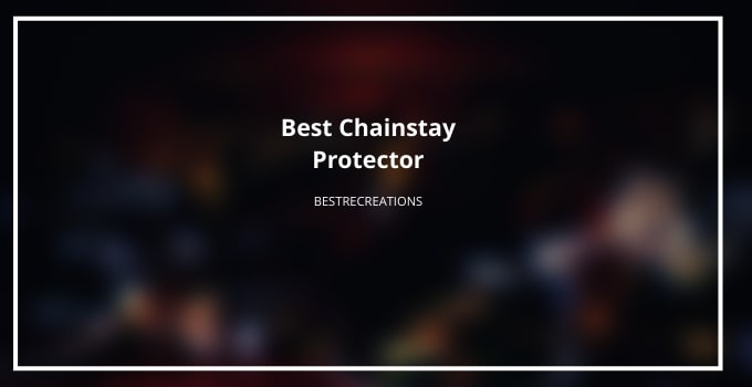 Best Chainstay Protector